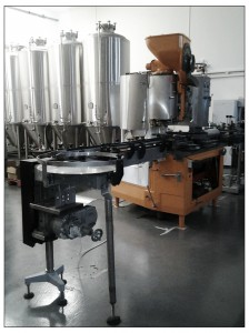 Conveyor belt for bottling machine